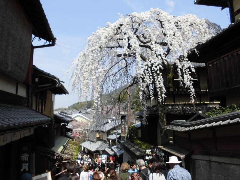 Kyoto Kiyomizu-Sanneisaka