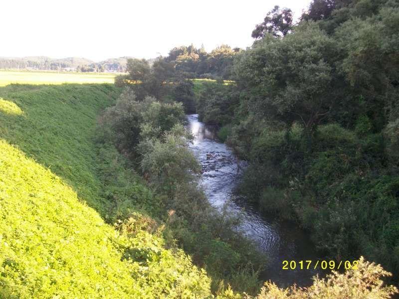 The Nitta River
