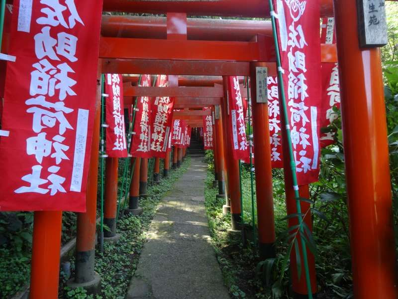 For those want to get a good fortune in business and career,  Sasuke Inari Shrine is a must . It's is a very  quiet impressive place with red toriis (gatewaies to a Shinto shrine).