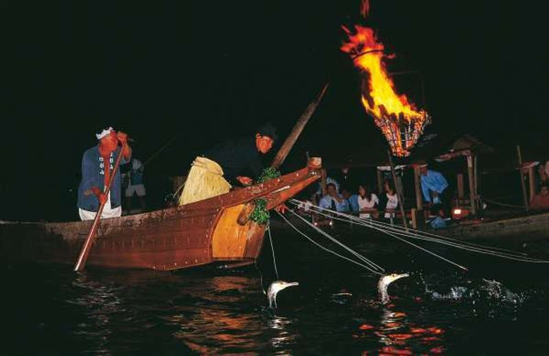 Cormorant fishing in Nagara River. A fishing master and birds collaborate to make one night show for guests on the river.