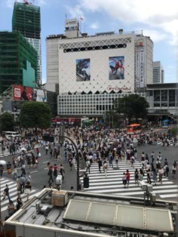 Zebra crossing at Shibuya. .