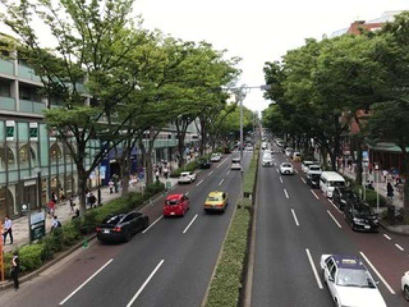 Omotesanndo Street;fashionable street