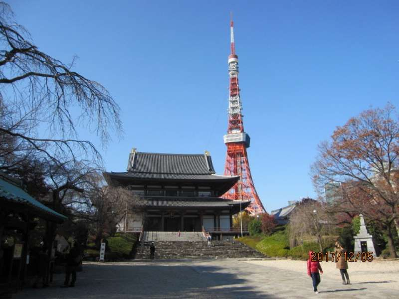 Zojo-ji Temple: An old temple founded in 14th century. It is a family temple of Tokugawa Shogunate. Its contrast with Tokyo Tower shows Tokyo,Now & Then.