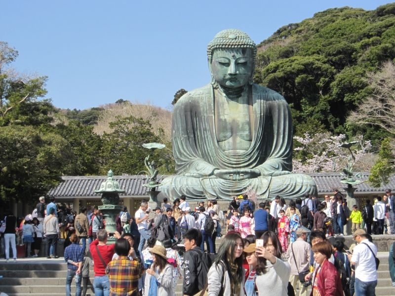 Kamakura Daibutsu: 11 meters in  height and weighing over 100 ton Great Buddha is located in Kotoku-in garden. One of the symbolic spots in Kamakura.