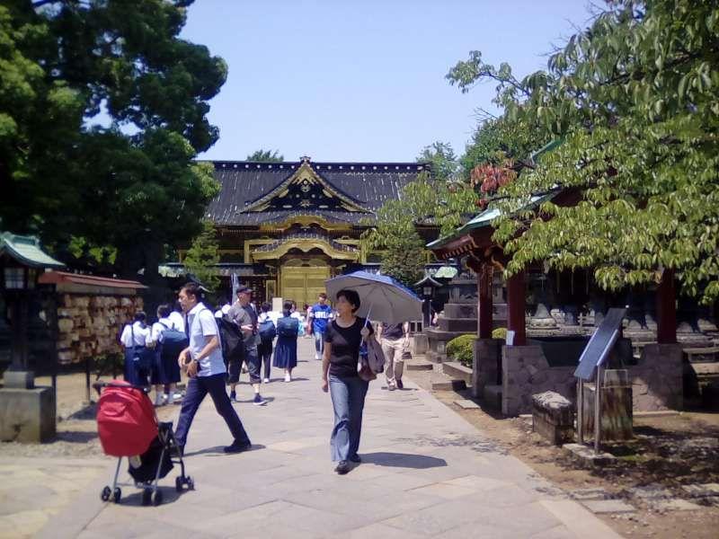 Ueno Toshogu Shrine where worships three Shoguns, who made Edo, former Tokyo, great