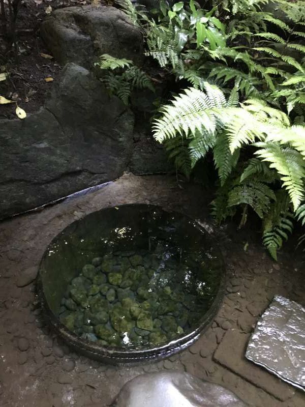 Kiyomasa's well at Meiji Shrine