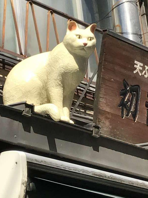 Cat at Yanaka Ginza
