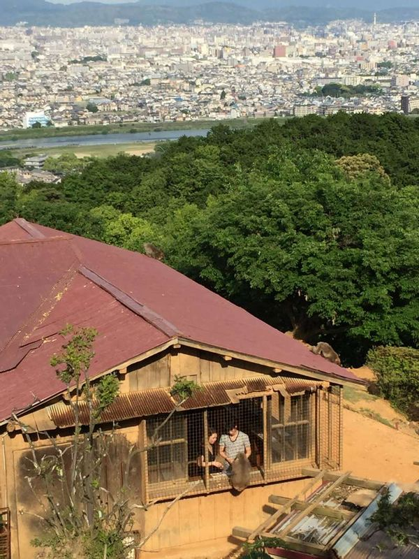 Monkey Park with the view of Kyoto