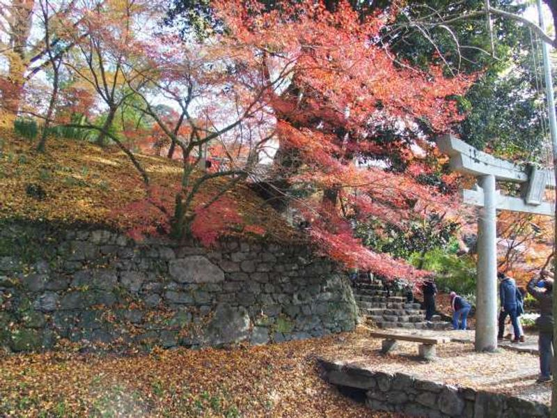 Japanese garden, temples, and shrines are particularly splendid in autumn when trees are turned into red and yellow.