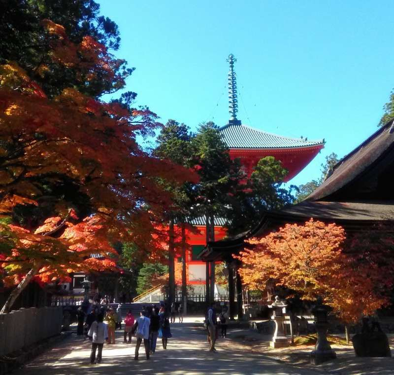 Mt Koya:  a religious and sacred place where you see many temples, it's still practical.