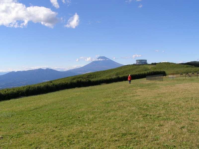 Mt. Fuji from a hilltop in Atami
