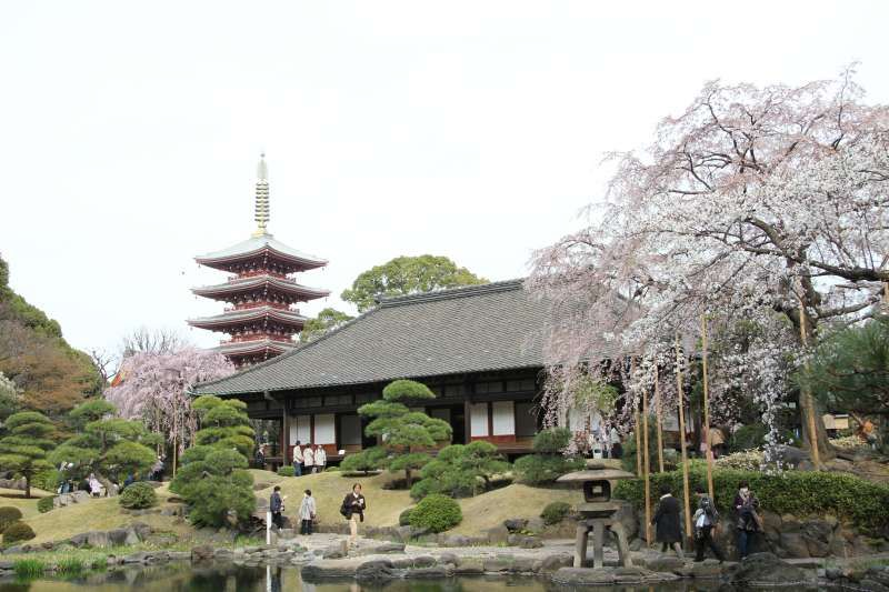 Five-story pagoda in Sensoji temple in Asakusa