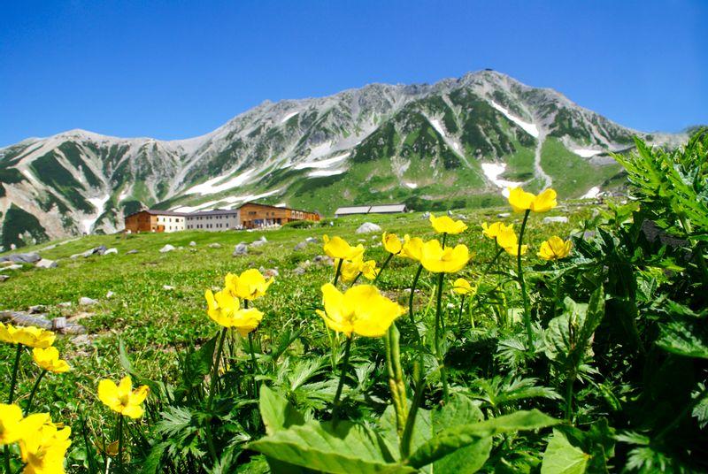 Mount Tate(Tateyama)