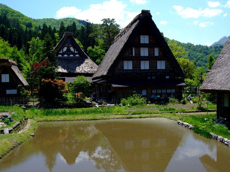 Myozen-ji Temple Museum