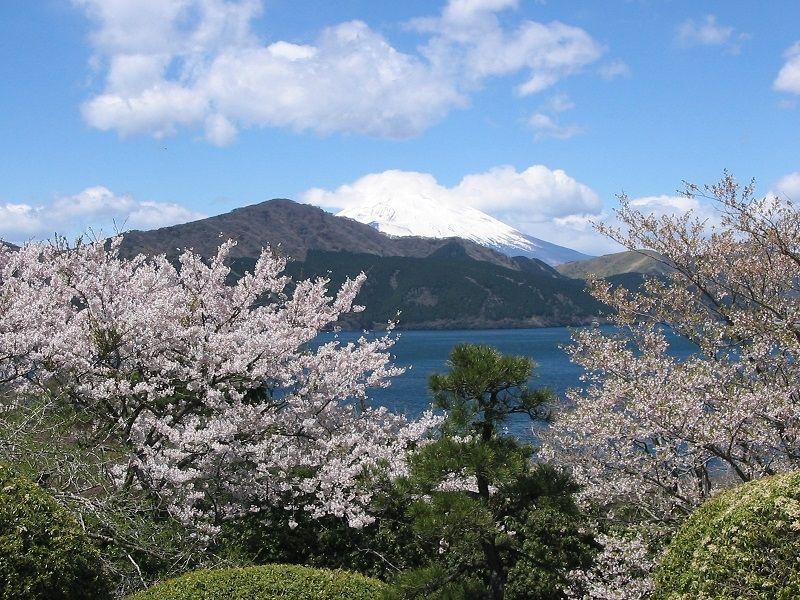 Onshi-Hakone Park