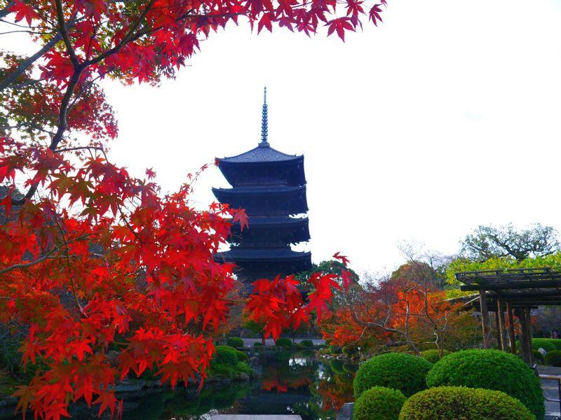Toji (Kyo-o-gokokuji)
