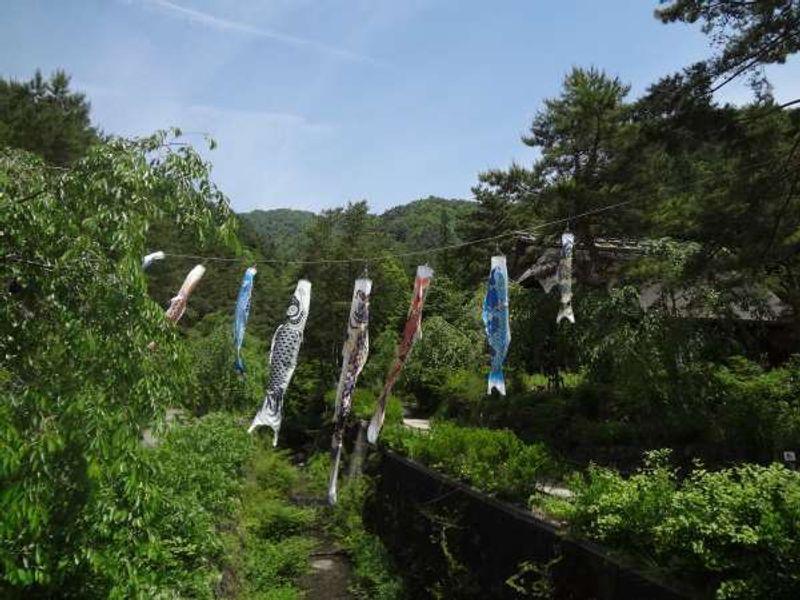 Koinobori, traditional decoration for boys' day in May at Saiko Iyashino-Sato Nenba
