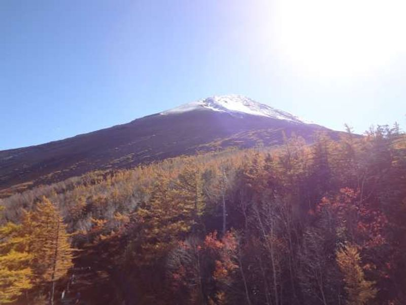 Mt. Fuji 5th station in Autumn with colored leaves