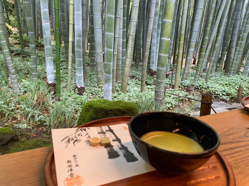 Have a cup of green tea at the bamboo garden of Hokokuji temple in Kamakura