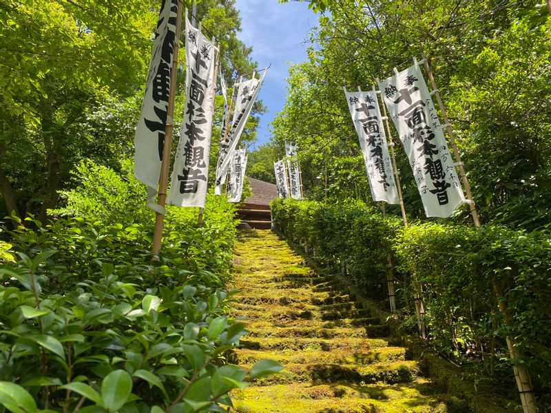 Mossy stairsteps of Kamakura's oldest temple.