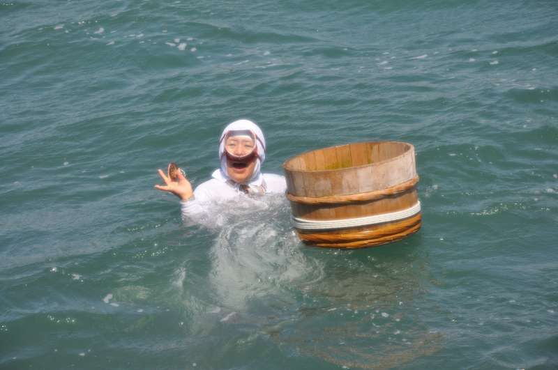 Ama(海女), a professional woman diver catching Turban shells and abalones.