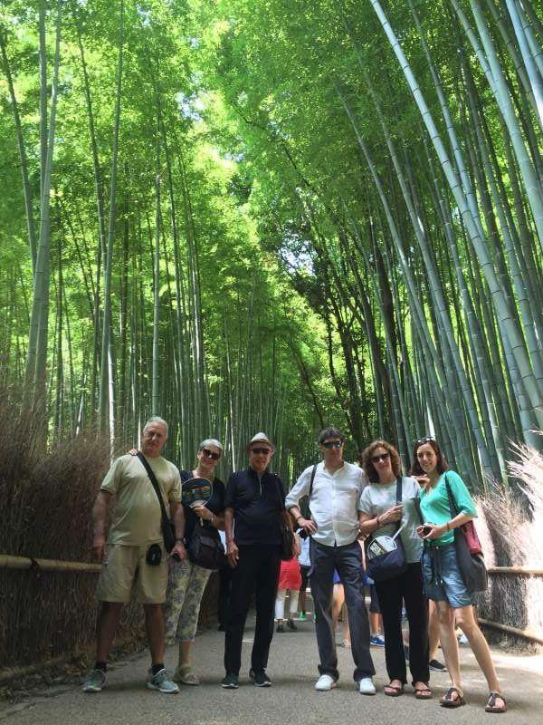 El bosque de bambú en la zona de Arashiyama, junto con Tenryuji, templo que tiene gran Jardín.