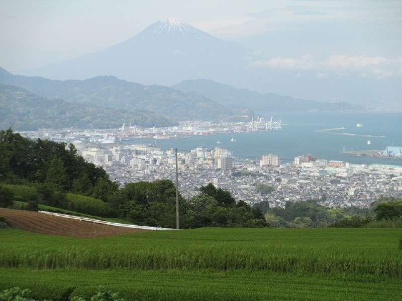Mt.Fuji from Nihondaira hilltop