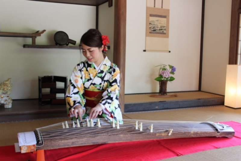 Try Japanese traditional musical instrument called Koto It's not difficult.