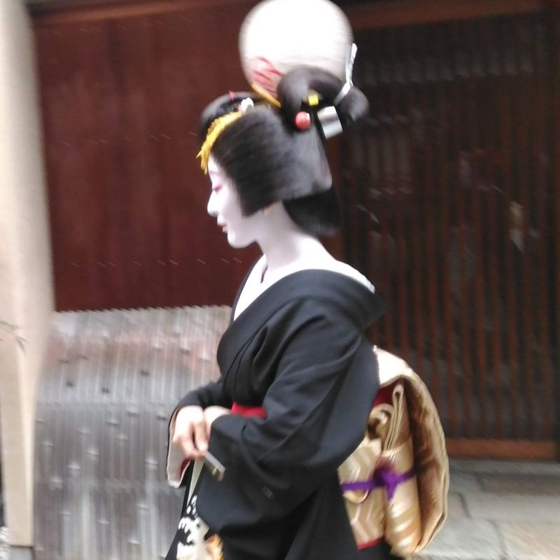 Beautiful Geikos can be seen in the streets of Kyoto