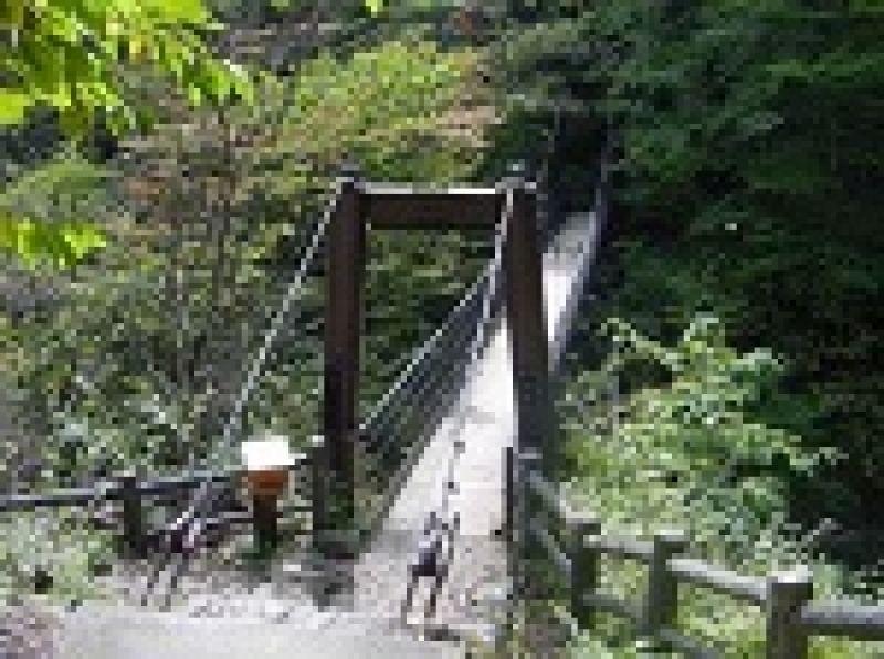 suspention bridges & falls