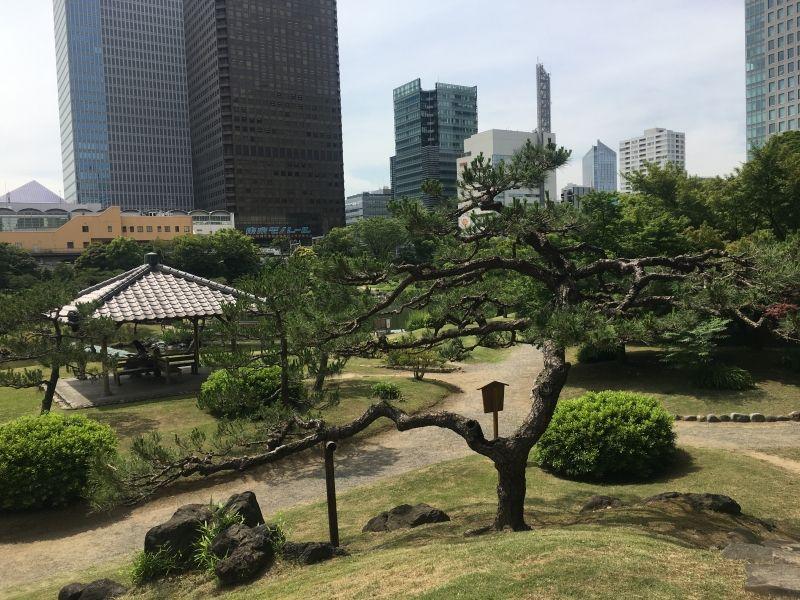 Traditional Japanese Garden in Hamamatsucho, Tokyo.