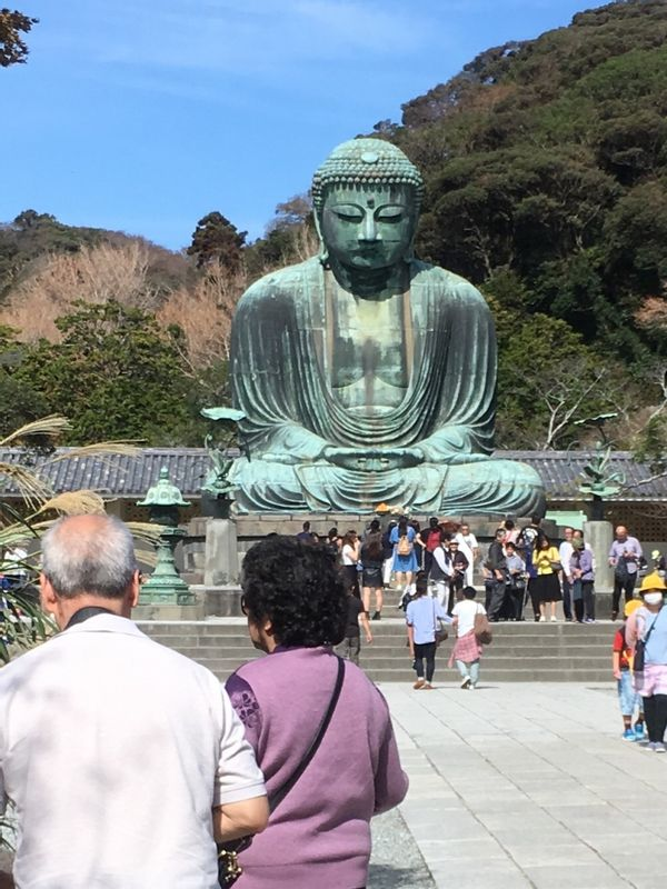 You can see the Great Statue of Buddha at Kotoku-in Temple in Kamakura.