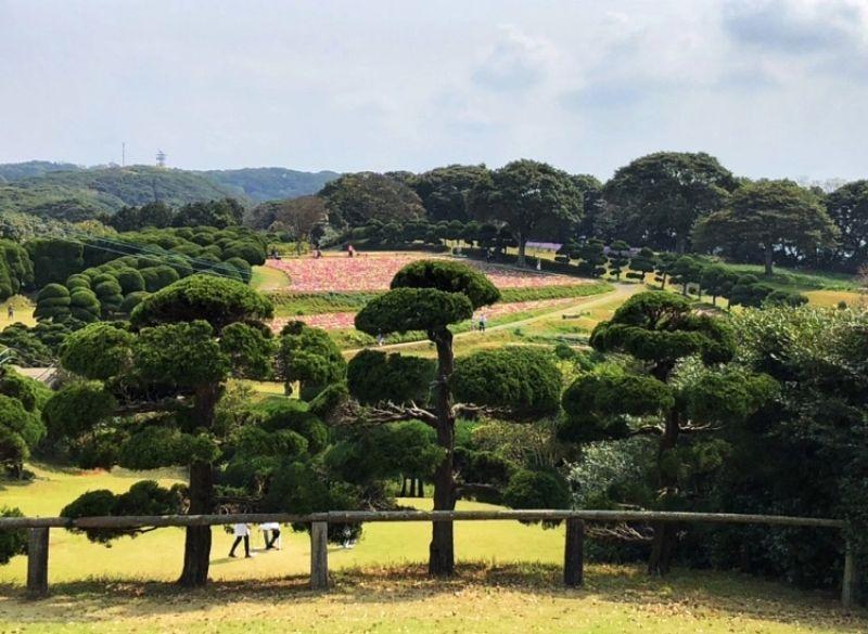 Nokonoshima.