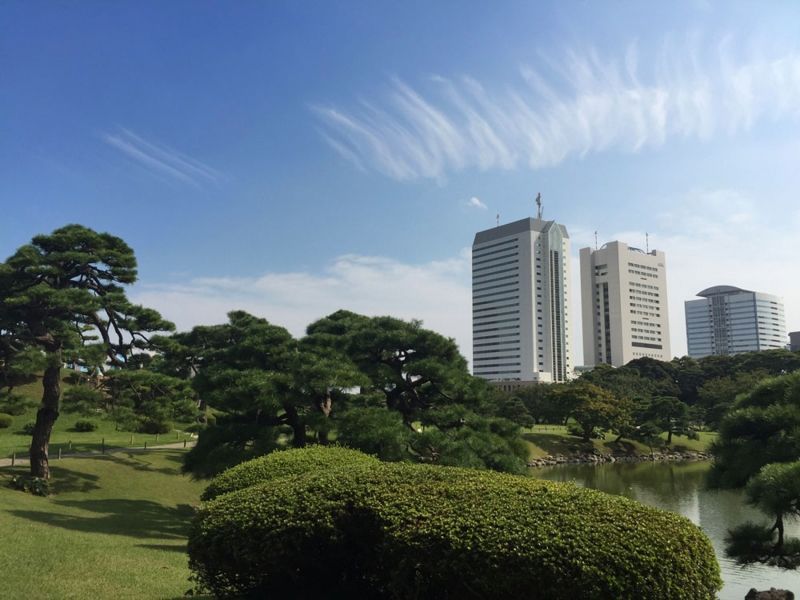 There are many beautiful Japanese-style gardens in Tokyo. Let me pick one for you according to your plan.