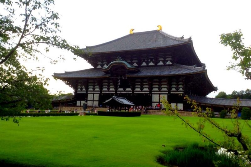 You can see the tallest Buda statue in this temple. In Nara