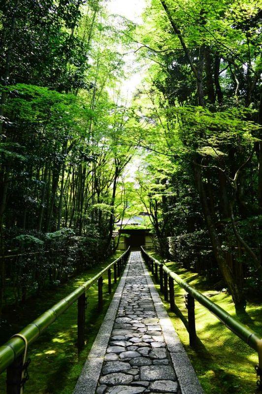 Kotoin at Daitokuji temple in Kyoto