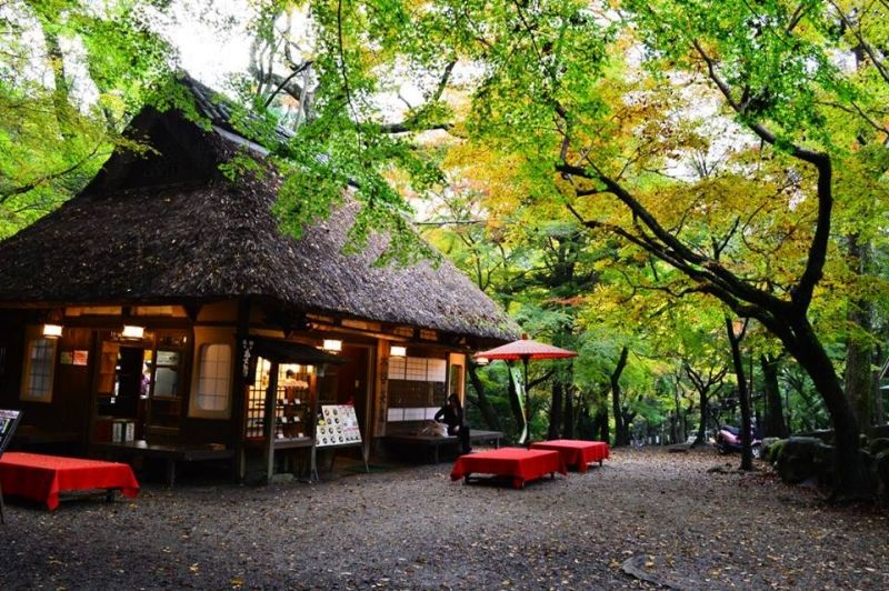 A nice little tea house near Kasuga shrine in Nara
