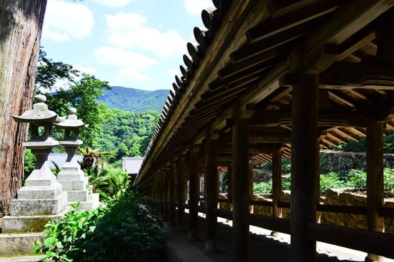 Hase temple in Nara