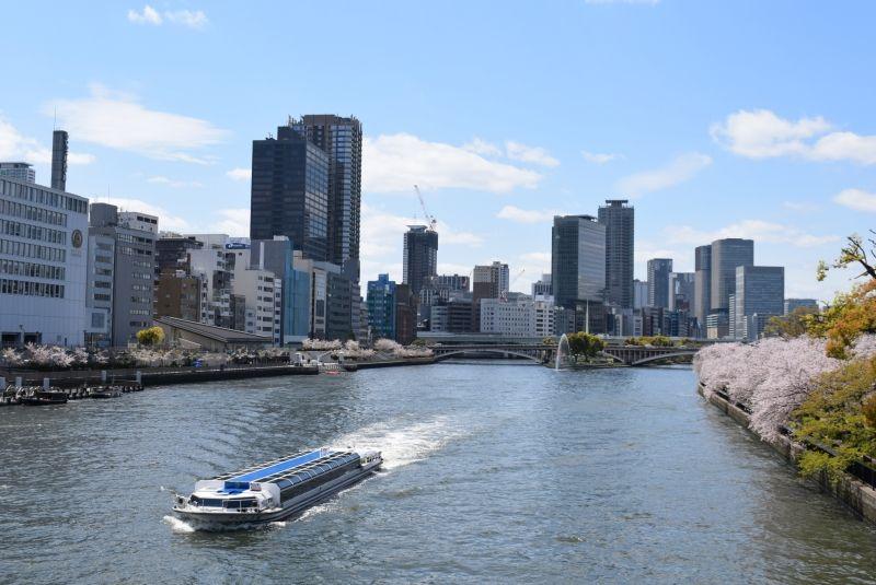 El Rio Okawa en Osaka en la epoca de cerezo en flor
