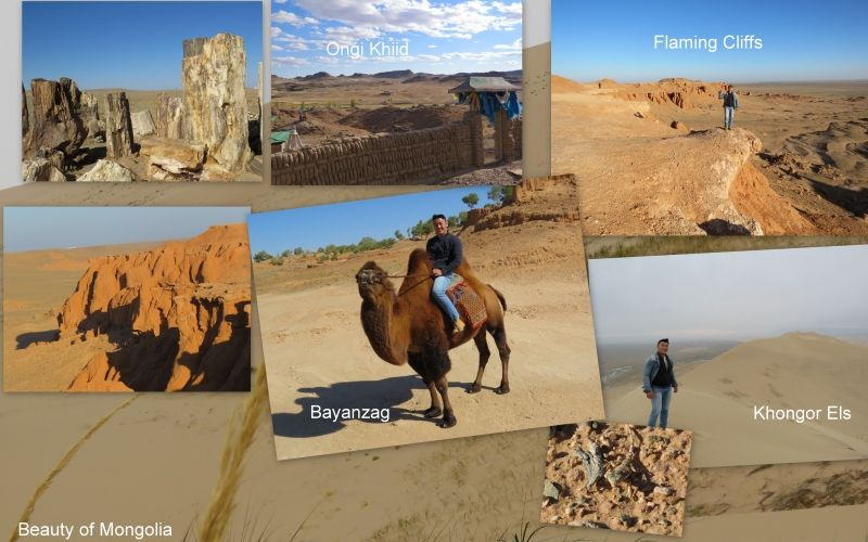There are many things to see in Mongolian southern area.