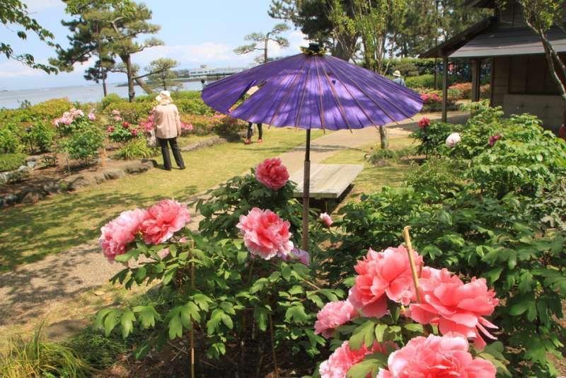 Ito Hirobumi (the first Prime Minister in Japan) old villa in Kanazawa, Kanagawa