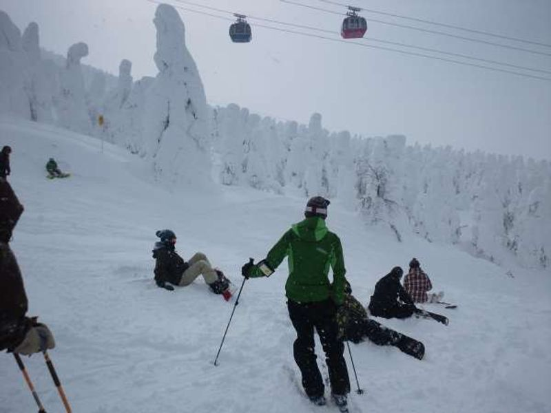 This is Zao Ski Resort in Yamagata prefecture.  You can enjoy the famous JUHYOU, snow mosters in January and February. Why don't you visit the local hot spring after skiing.  There are hundreds of hot spring with the