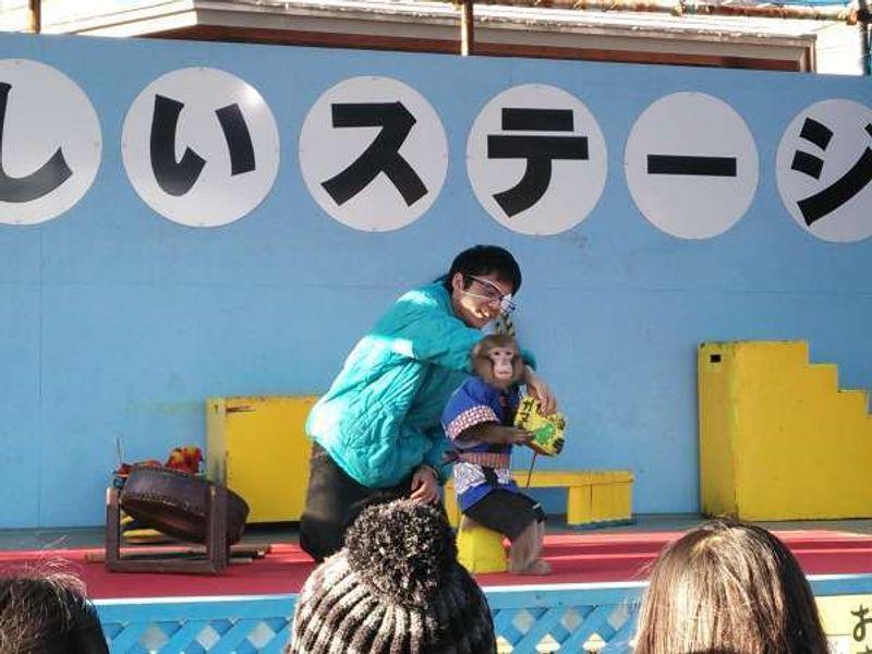 Performance of monkeys at Ushiku Daibutsu.