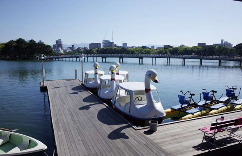 Let's rent a boat and have a relaxing day in Ohori park.