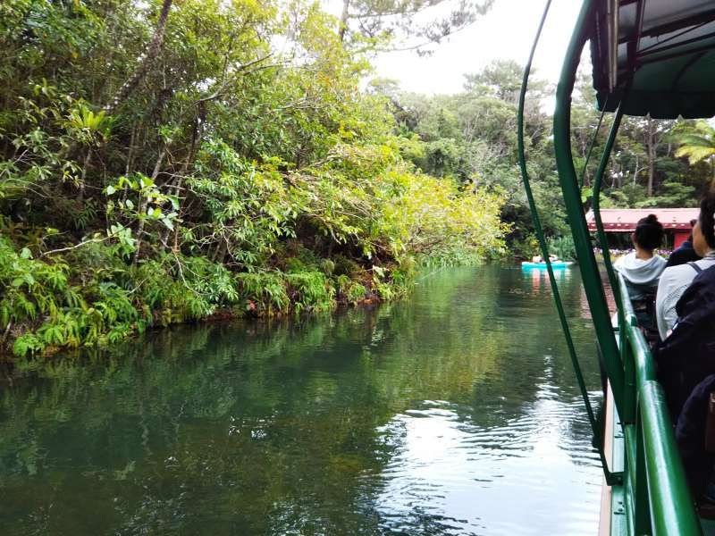 If you like to feel the nature, especially subtropical climate, here is the place for relaxing. At the same time, you can enjoy canoeing, stand up paddle at the lake.