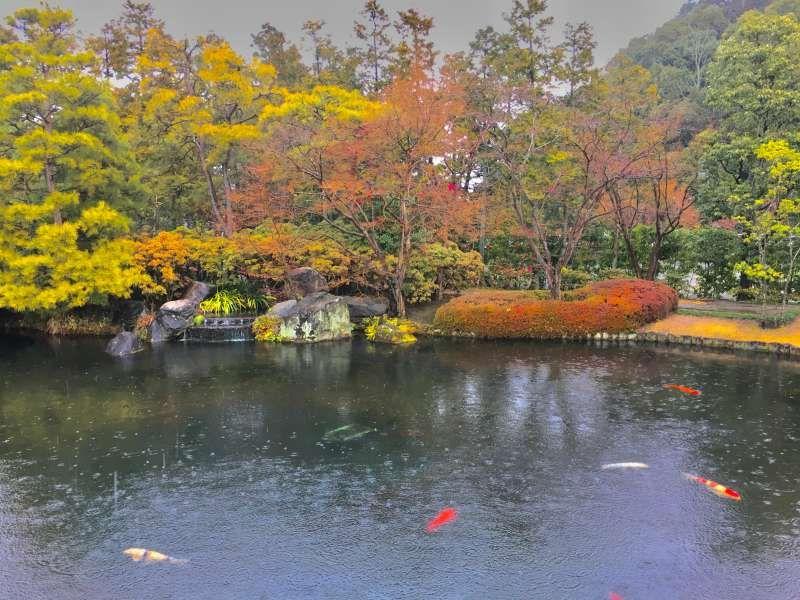 Koukoen Garden in Himeji