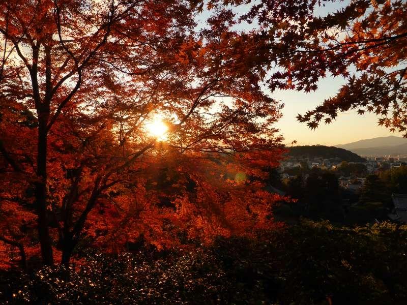 Ginkakuji-temple at dusk