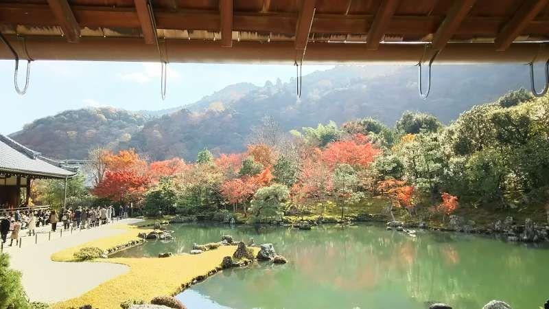 The garden of Tenryuji Temple in Kyoto