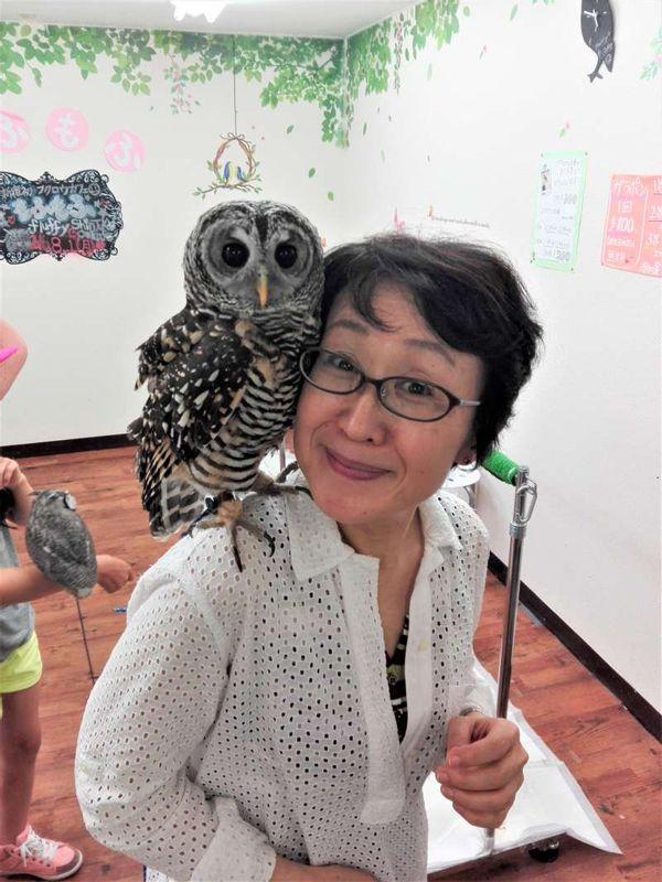 Owl Cafe in Shinjuku.