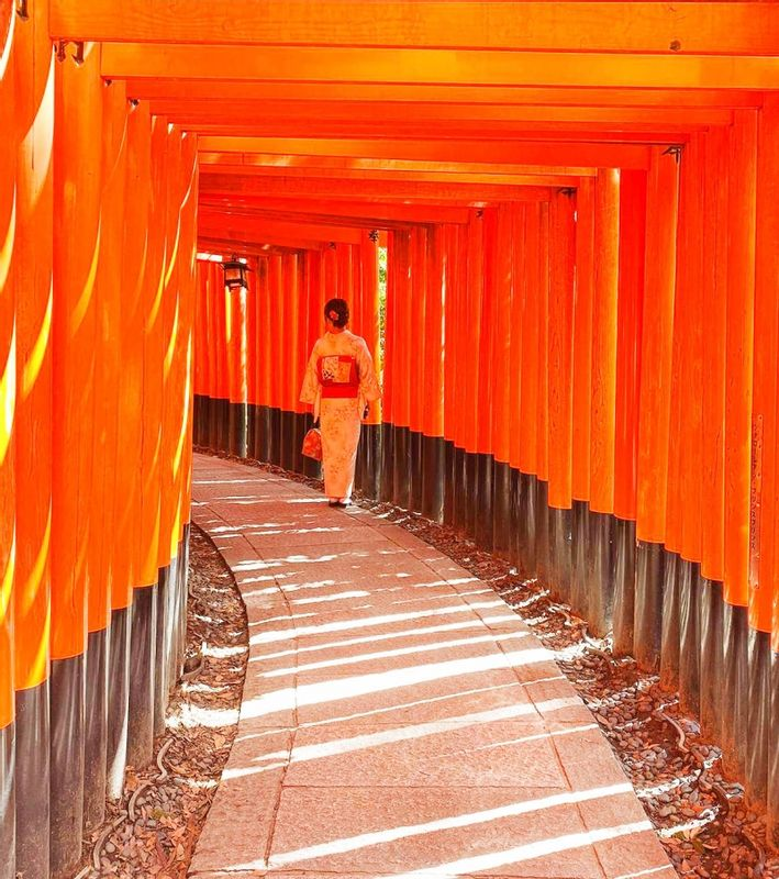 To take nice pictures at Fushimi Inari shrine, you should visit in early morning.